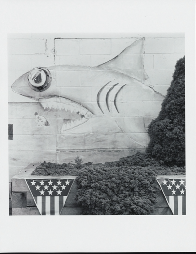 Mike's Bait & Tackle photograph by David Plowden