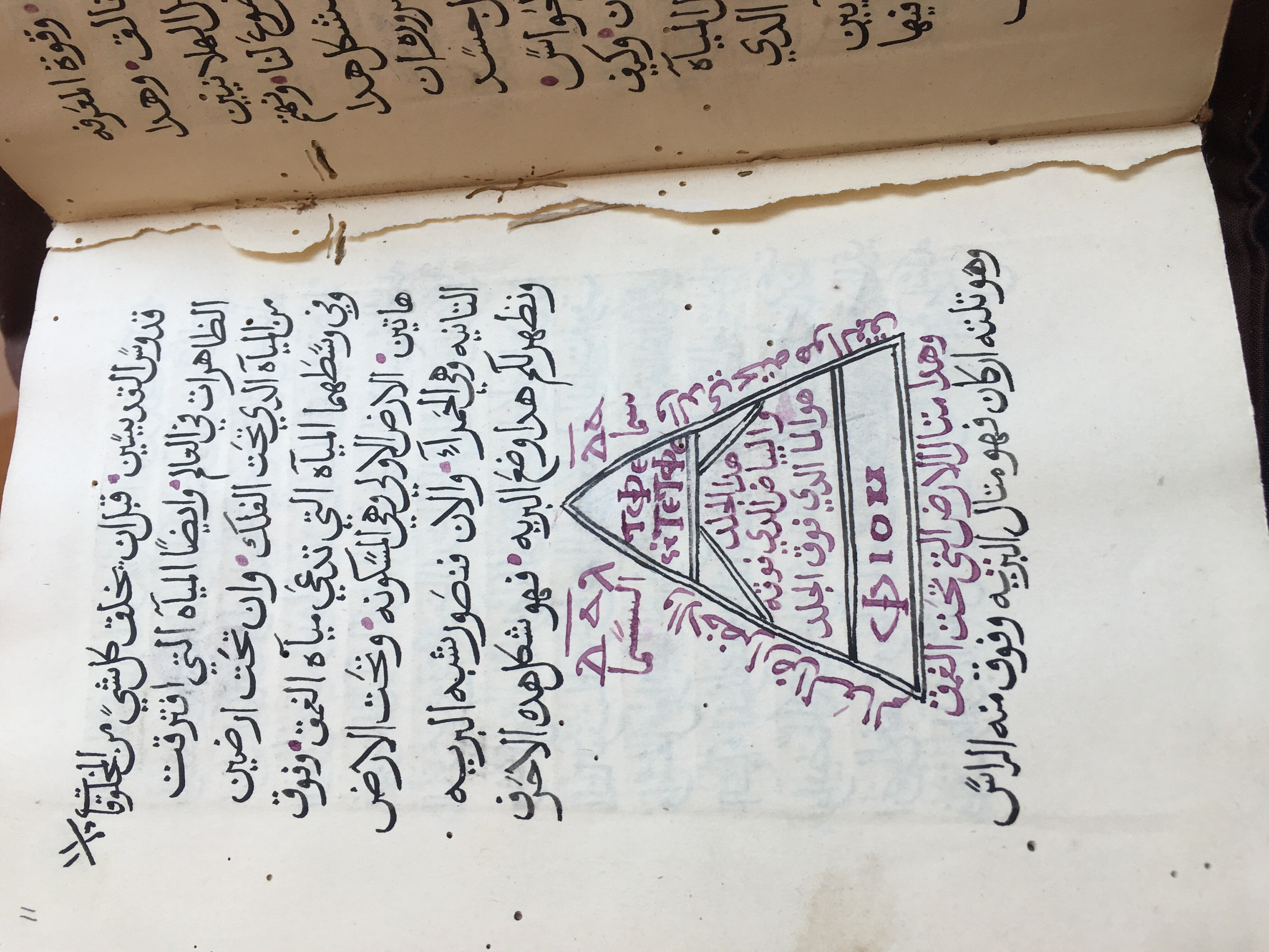 An image of a manuscript page with Arabic text in black ink and an illustration of a Greek letter in red and black ink.